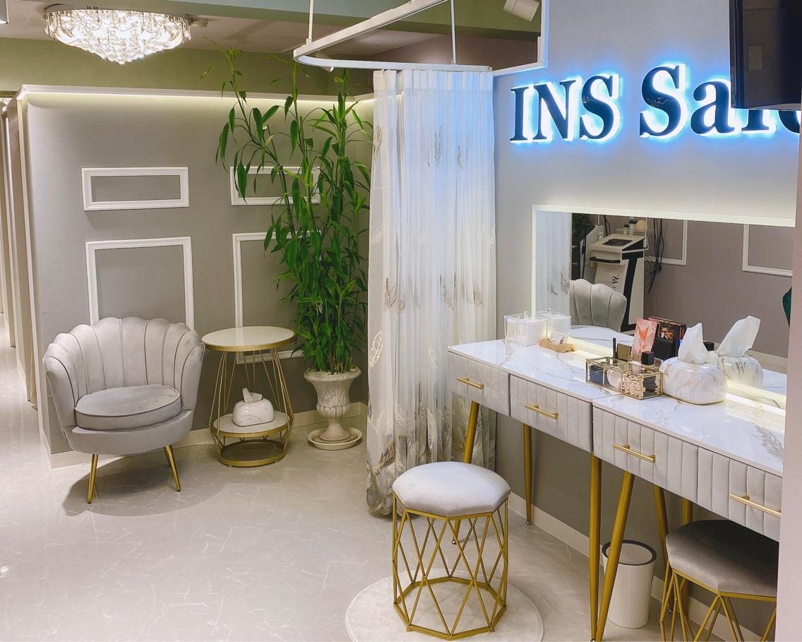 INS Salon
