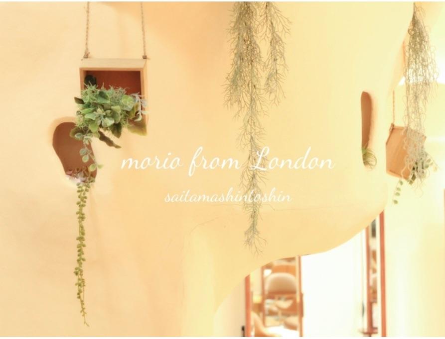 morio from london