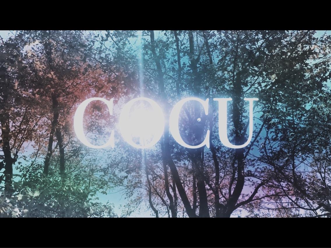 COCUhairdesign