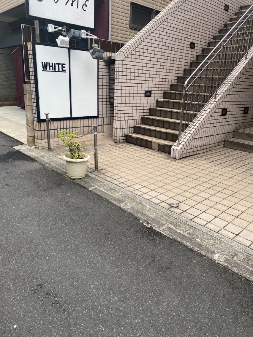 _White  (アンダーバーホワイト)
