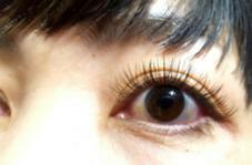 SOL Eyelash salon所属・SOLmiuraのフォト
