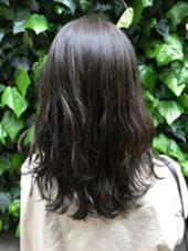 大人気‼️6トーン地毛風カラー ヴェールマット✨ MichioNozawaHairSalonGinza所属・モリケイタのスタイル