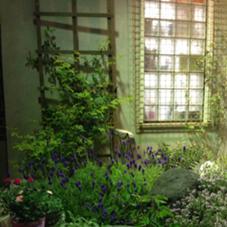 お店の前の庭です。 STYLE所属・stylesagamiohnoのスタイル
