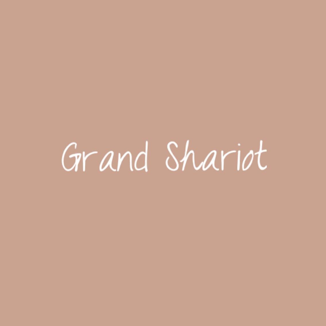 GrandShariot所属・前田亜紀の掲載