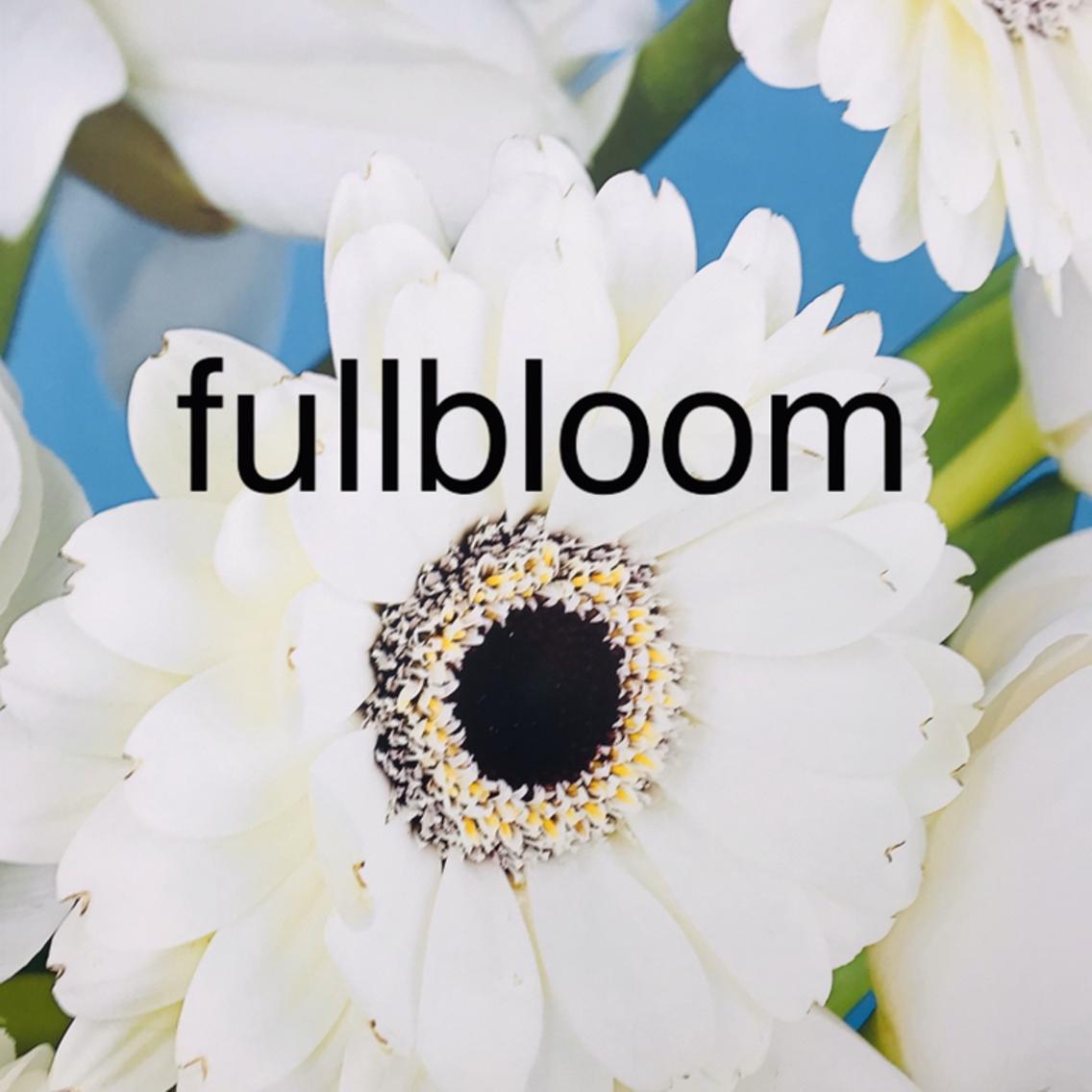 fullbloomeyelash所属・fullbloom Ajiroの掲載