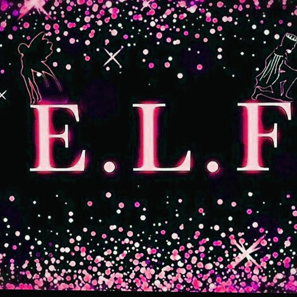 E.L.F所属・E.L.F清水の掲載