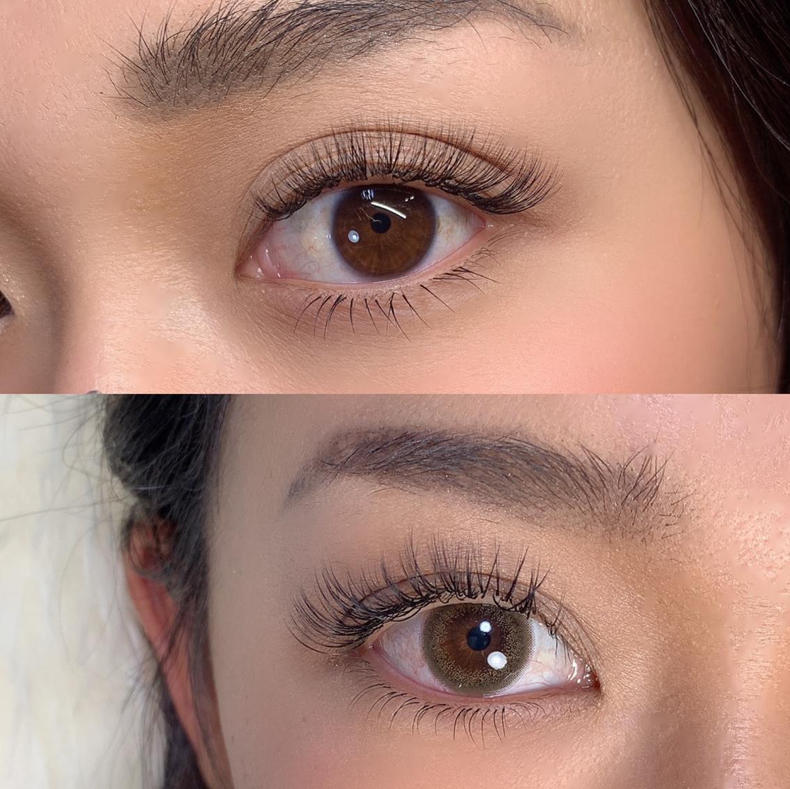 eyelashSpaniel所属・eyelashSpanielの掲載