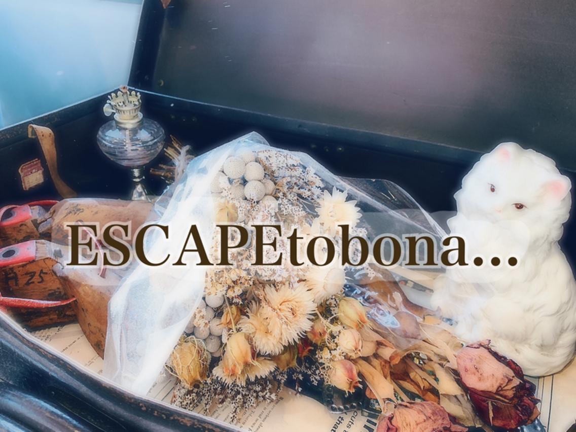 ESCAPE to bona.所属・岡田樹の掲載