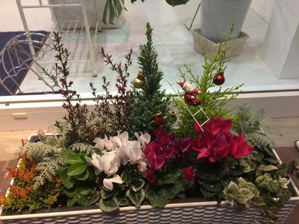 季節のお花がお出迎えします♪ POLA THE BEAUTY豊山店所属・橋本ひとみのフォト