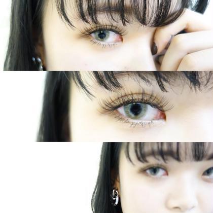 eyelashSpaniel所属・eyelashSpanielのフォト