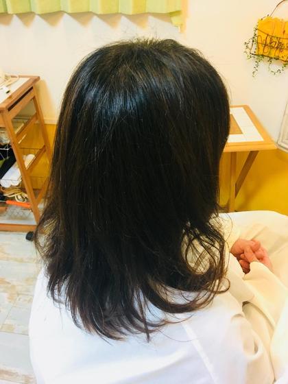 ディレクターCUTモデル 【撮影有】