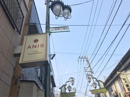 アニス所属・杉村真梨子のフォト