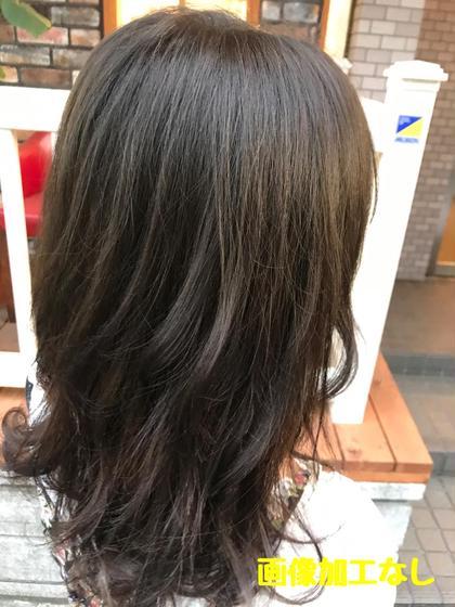 カラー セミロング アッシュブラウン 毛先がしずんで暗くなっていた髪の毛を合わせました!! カラーの調合が大事です!