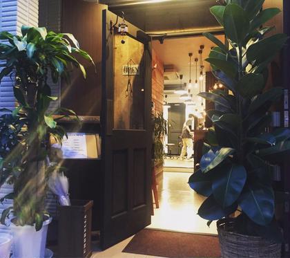 その他 カラー ネイル パーマ ヘアアレンジ マツエク・マツパ メンズ 観葉植物とKHANH HOAのロゴ入りウッドドアの入り口でお迎え致します☆
