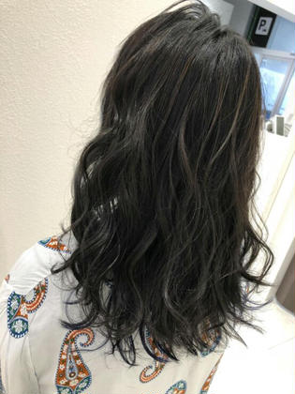 髪のダメージ軽減、色持ち、カットカラートリートメント話題のホリスティックカラーセット