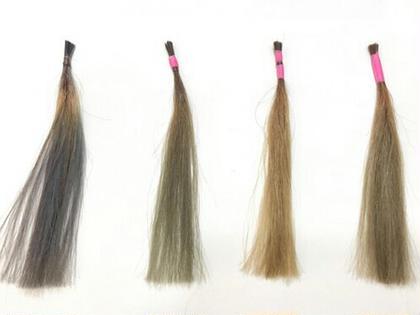 その他 【続けて3回使用例】 右から3つの髪束は従来のカラーシャンプー。 左の髪束が今回入荷したての巷で話題の大好評【極秘シャンプー】。 この差はスゴいの一言ですね、、。 ご自宅でたった3回洗うだけでこうなるようです✂  当店でもすぐ売り切れるので、気になる方はお気軽にお問い合わせください~✌