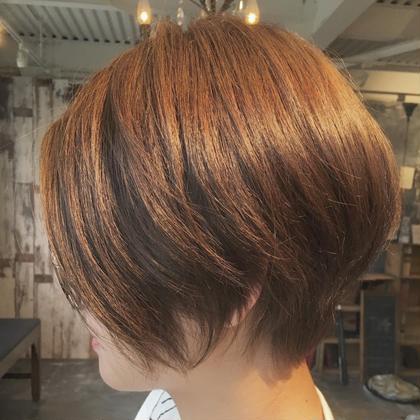 オーガニックヘアカラー+カット+アミポリストリートメント付 白髪染オシャレ染どちらでも⭕️ リタッチ、全体どちらでも⭕️