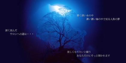 トリートメントルールに飾る、柴田益夫氏の海中写真は、まるで深海に横たわっているかのような錯覚に陥ります。