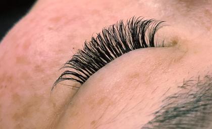 【新規】ボリュームラッシュ 500本(約85〜125束) 最高級セーブル毛