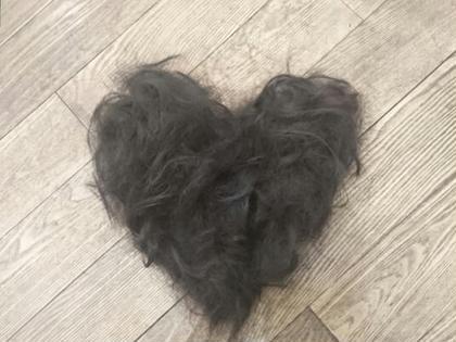 ロングから、ばっさりショートにしたモデルさんの髪でアート♡ ばっさりの方は、その後の髪の毛アートもおまかせください(*^▽^)ノ(*^▽^)ノ Vision  aoyama所属・吉川瑞希のスタイル