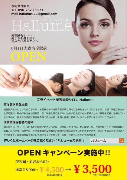 オープン特別価格実施中 美容鍼灸サロンHallume(ハリューム)所属・高沢順一のフォト