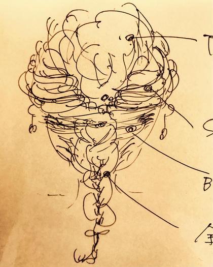 セットも勉強中 AraiKiyomiのヘアアレンジ
