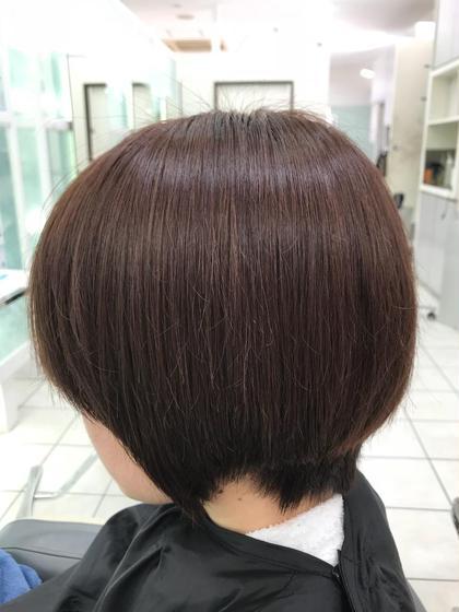 カラー ショート 艶髪ナチュラルブラウン