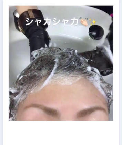 ❣️【7、8月限定!】❣️  眉カット+シャンプー+カット+夏用シャンプー(商品)