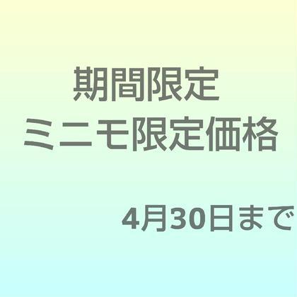 【期間限定価格】フラットセーブル(ブラウン可)100本【美容コーティング付】