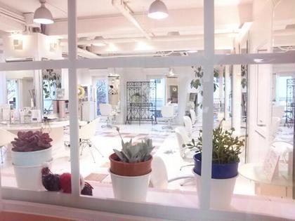 店内は広くて、自然光が爽やかです。  HAIR        STREAM所属・kataokatakayukiのスタイル