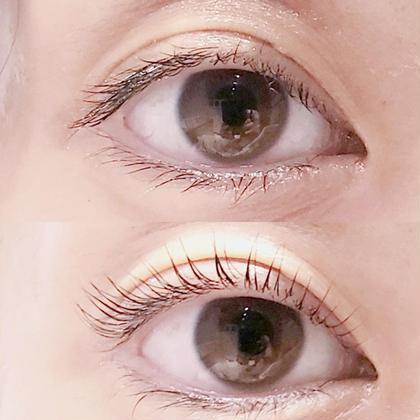 パリジェンヌラッシュリフト☆ Luum eyelash所属・Luumeyelashのフォト