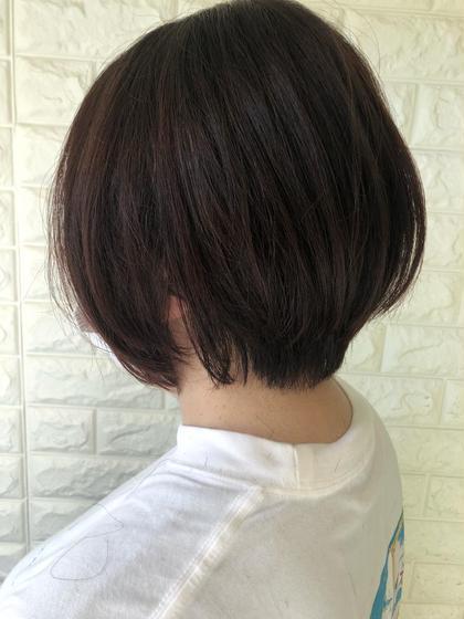🍃襟足こだわりカット🍃+エドルカラー+アミノ酸艶トリートメント11550円→8800円