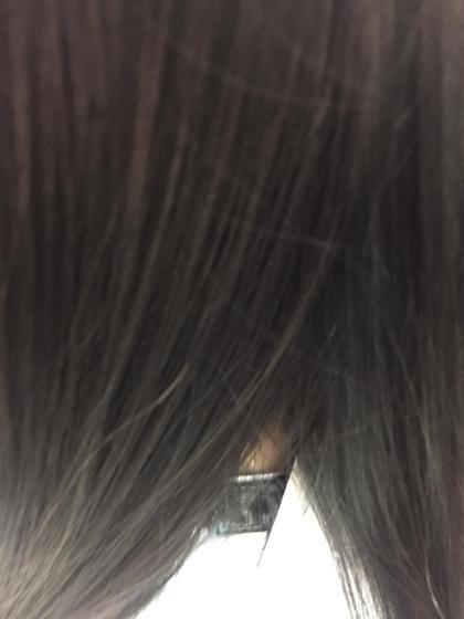 アッシュグレージュ他黒染め+塩基性染料HC染料カラートリートメント(ブリーチ毛、白髪等) 明るい髪をナチュラルに暗髪へと