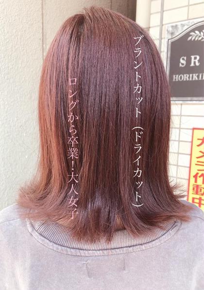 【新規25%OFF】体感!ドライカット+デザインカラー
