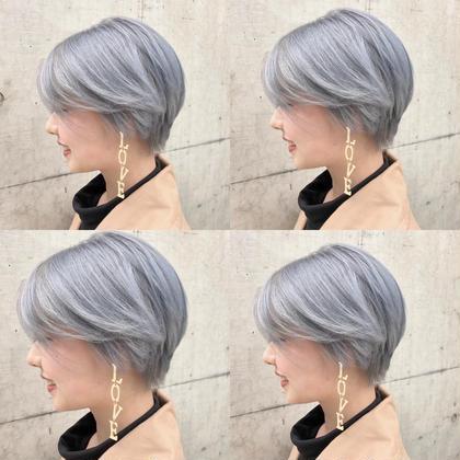 カラー ショート perfect silver