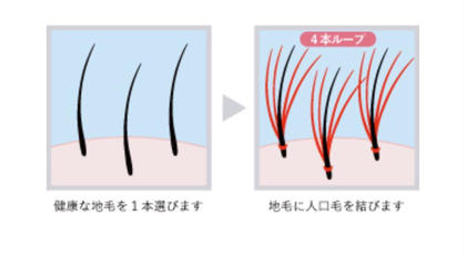 Tautui所属の代表Shinjiのヘアカタログ