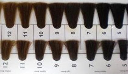 白髪染めリタッチ(2cm以内)のみ限定特別価格。(セルフドライ)