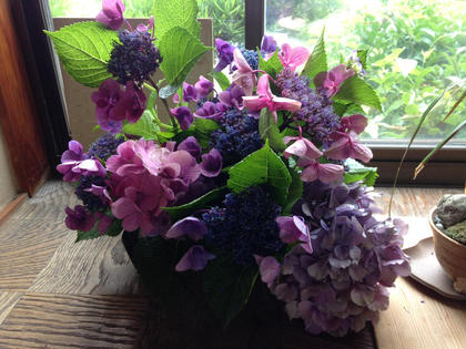 お庭の紫陽花を生けてみました。