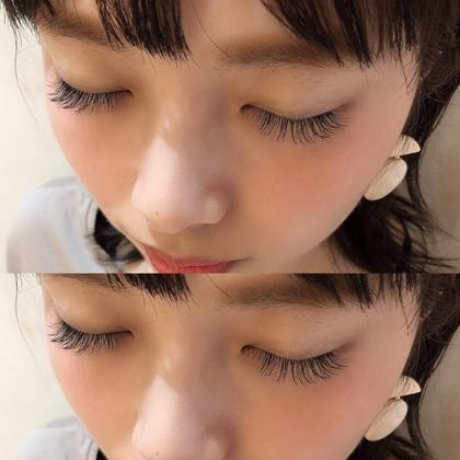 silk/140本/Cカール/9.10.11mm/cute