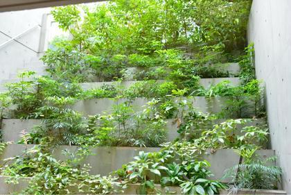 〜ライトコート〜 グリーンがとっても綺麗で癒されますよ♡ BEAUTY DAY byORCHID所属・山本峰空のフォト