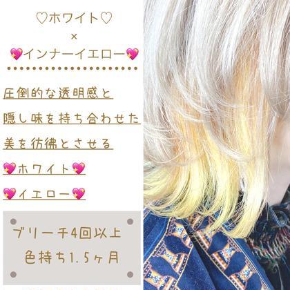 【💖ブリーチ💖】業界最新ファイバープレックスPPT&CMC付きケアブリーチ+イルミナカラー+TOKIO+カット💖