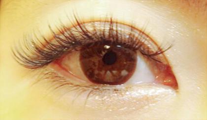 ゴージャスデザイン✨ 華やかな目元に仕上がります✨ eye lashhalre所属・Junジュンのフォト