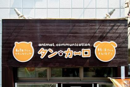タン・カーロ所属・後藤ユミ子のフォト