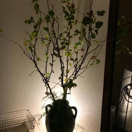 MARUNOUCHI salon所属・加藤巳和のフォト