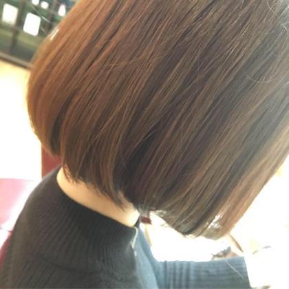 【🌸髪質改善🌸】カット &+髪質改善キラ髪ストレート+プレミアムスチームトリートメント