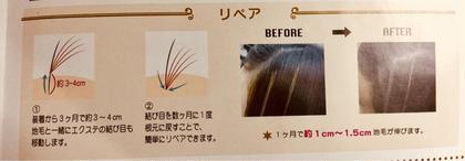 ボリュームアップエクステです。 仕上りイメージになります。 Goldlashのヘアアレンジ