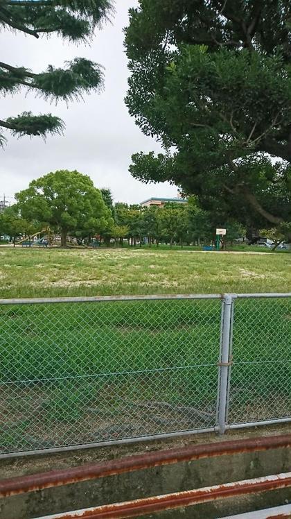 野田パークビルの向かいには大きな公園があります。 リリーズラッシュ所属・LILY'SLASHのフォト