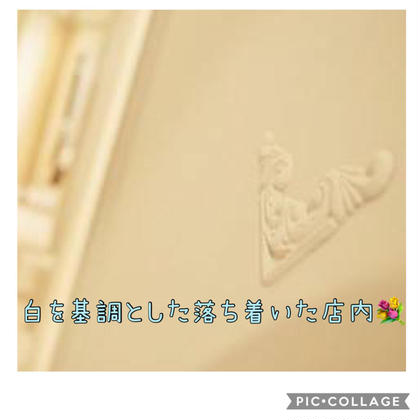 Selehaセレハ所属のSeleha池袋代表 田中遥のエステ・リラクカタログ