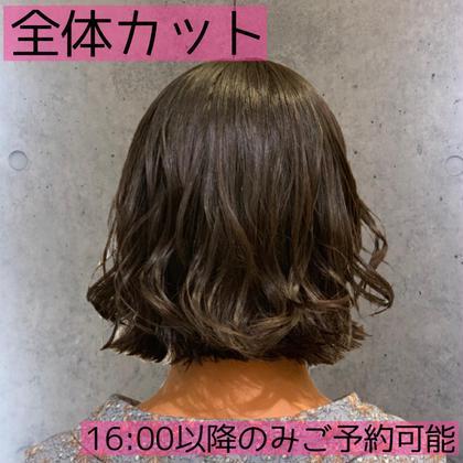 【10月限定👻残り8名 カット】¥550