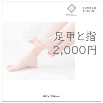 オープン記念パーツ脱毛体験!(1回限り) 『足甲と指』 指先〜甲の毛の生えている部分まで